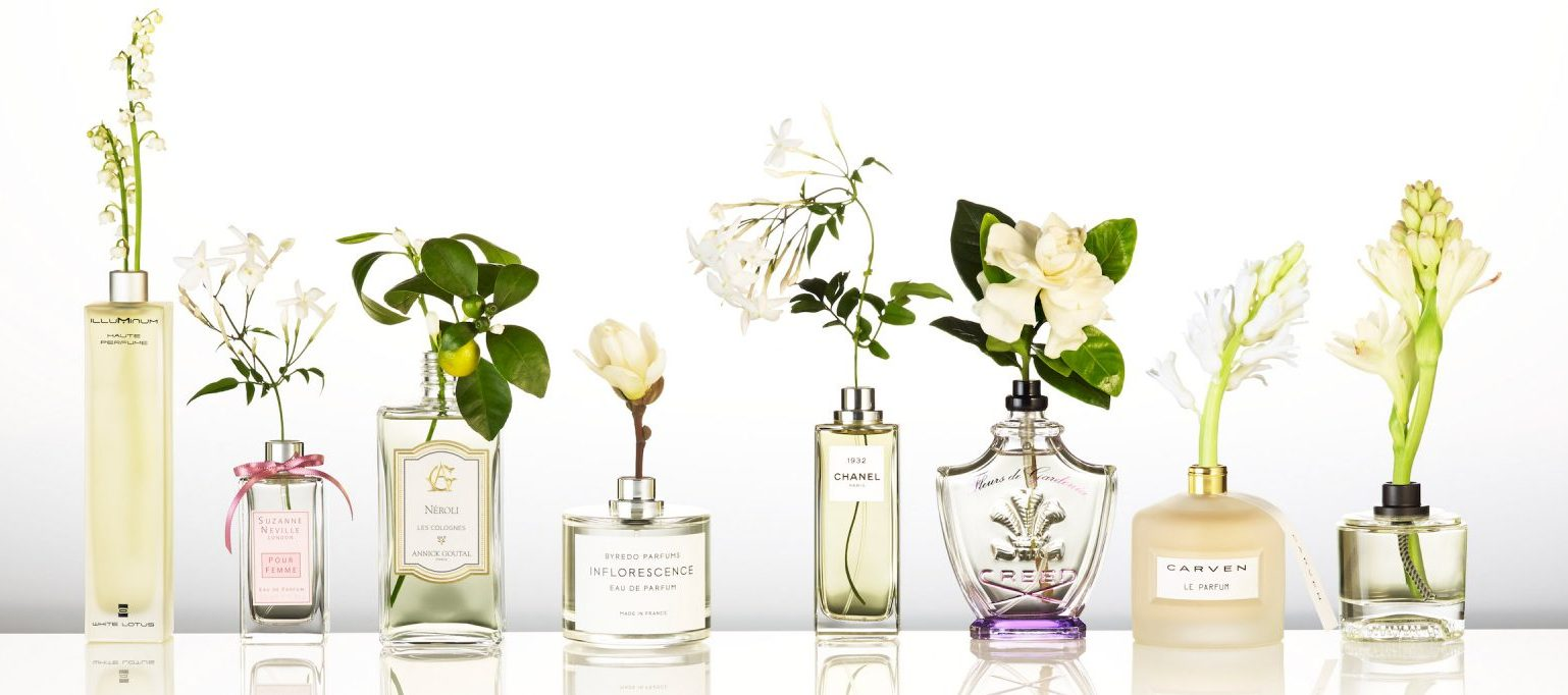 069_A_Still_Life_Product_Photographer_Pedersen_cosmetic_beauty_makeup_fragrance_perfume_parfum_eau_scent_floral_flower_plant_stem_vase