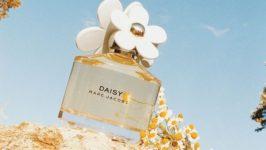 Nước hoa hương hoa cỏ đáng yêu nhất cho nàng