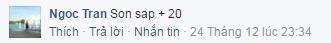 ngoc-tran-son-sap-20